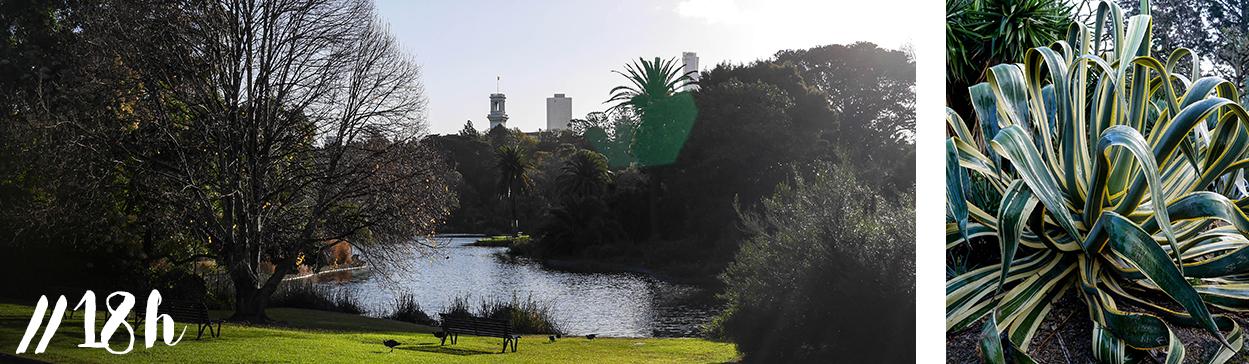 melbourne-blog-voyage-visite-cityguide-royal-botanic-garden-jardin