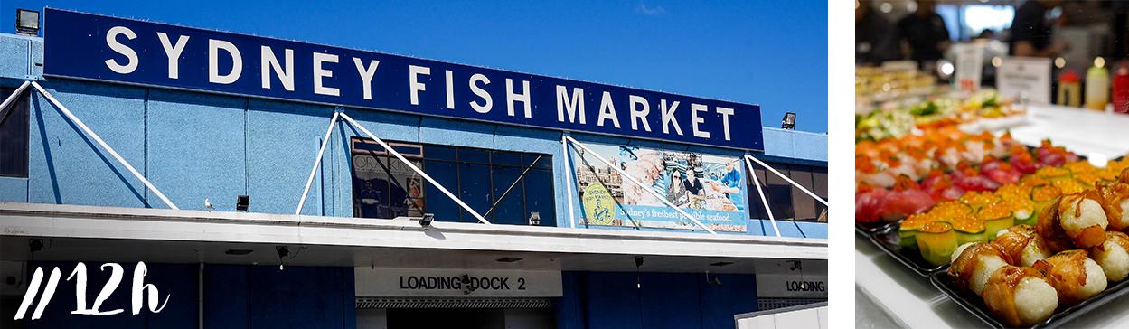 12h-fish-market-marche-poissons-midi-sydney-blog-voyage-visite-cityguide