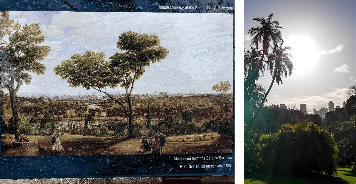 melbourne-roadtrip-voyage-royal-botanic-garde